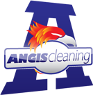 Angis Cleaning Logo